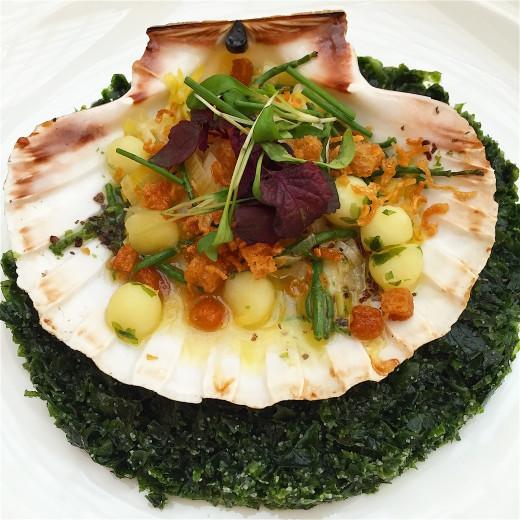 Celeste - scallop, seaweed, potatoes